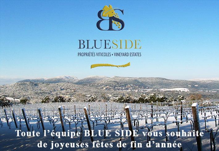 BLUE SIDE, spécialiste des transactions, achat, vente de propriétés et domaines viticoles en Provence et Languedoc, vous souhaite de joyeuses fêtes de fin d'année 2018
