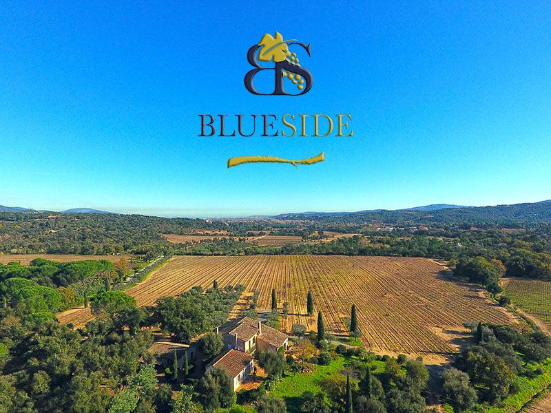 Blue Side vend le Domaine des Vallats - AOP Côtes de Provence